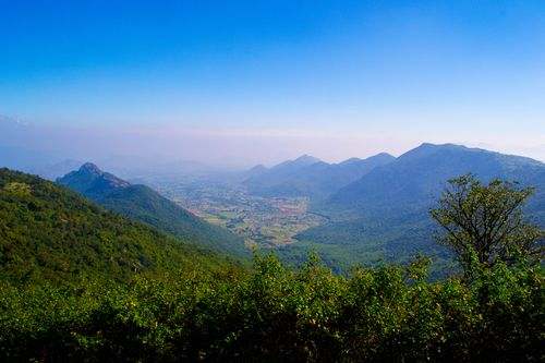Yercaud(commons.wikimedia.org)